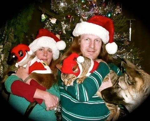 20111224-192627Siamese cat photo.jpg